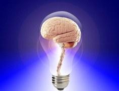 imagination (brain in lightbulb)