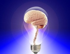 imagination (brain in lightbulb)
