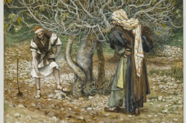 Parable of the Unfruitful Fig Tree (1894), James Tissot (1836-1902)